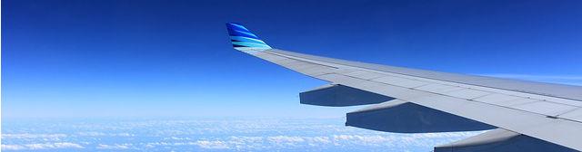 wing-221526_6402016